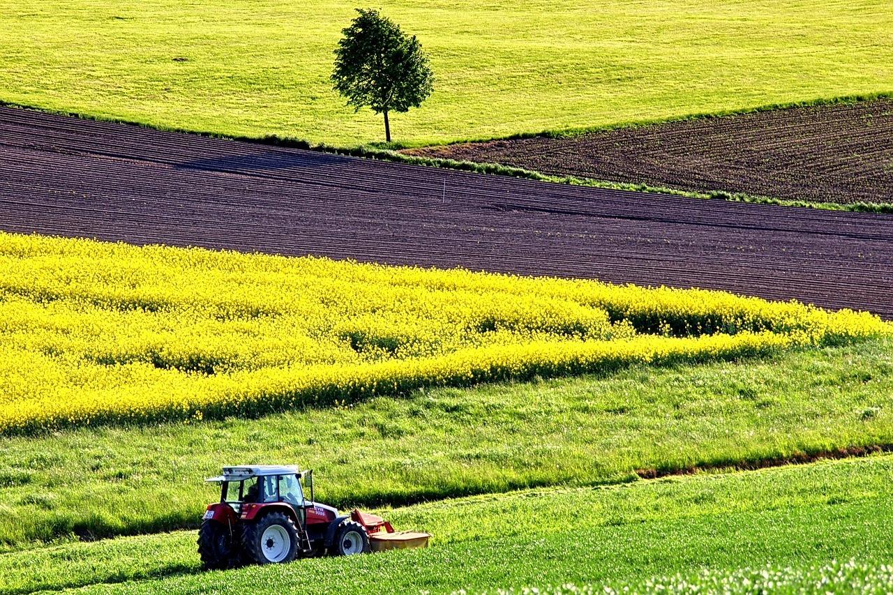 Polski wynalazek pozwoli zredukować stosowanie pestycydów i nawozów